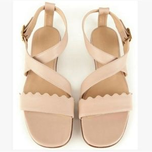 Chloe Scallop Sheep Waves Flat Sandals 7.5